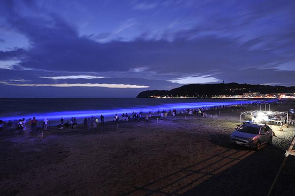 NightWave -光の波プロジェクト-